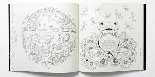 Enchanted Forest Is An Inky Quest And Colouring Book By Johanna Basford