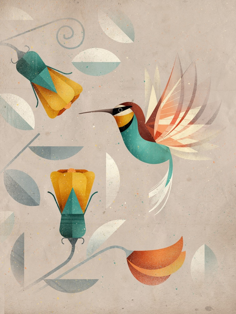 Dieter Braun takes inspiration from the natural world in his illustrations