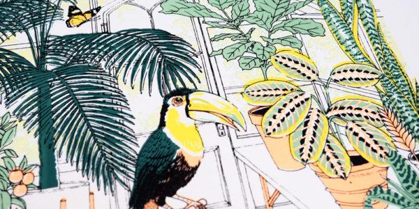 trend, tropical, botanical, Summer, repot, Jacqueline Colley, design, illustration, pattern, fashion